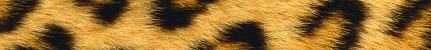 Faux Fur - 10.4