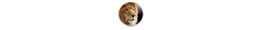 8b37914f_Lion_Icon_SCREEN