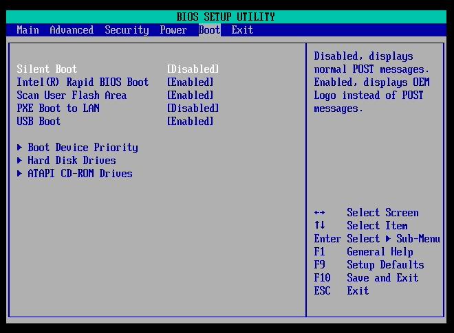 Cette option affiche l'écran de boot au lieu d'un écran gris