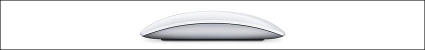 mla02av4-600